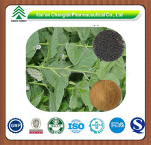 GMP factory supply Hot sale high quality Malaytea Scurfpea Fruit P.E.
