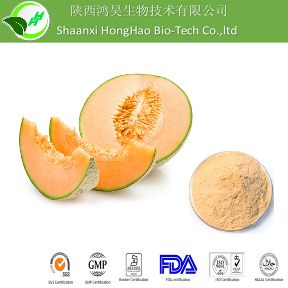 Honghao Hot Sale cantaloupe extract/freeze dried cantaloupe powder