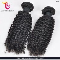 Factory Price Full Cuticle Wholesale Brazilian Virgin Hair Extension Kinky Twist