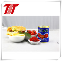 400g natural and organic products of tomato paste