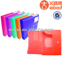 normal ECO-FRIENDLY PP document case with handle