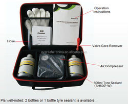 Professional tire sealant kits with air compressor