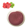 Hot selling Raspberry Powder for Wine or Beverage