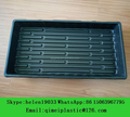 Nursery Flat Tray for Planting Growing
