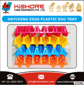 30 holes high quality plastic egg tray