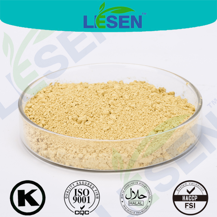 Hot selling High Quality Panax Ginseng Root Extract Powder