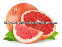 Supplier of Grape Fruit Oil / Fresh / Natural / Pure