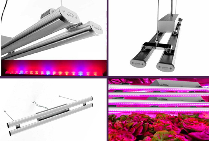 LUXINT New design double bars double tube set led grow light led linear grow light for medicinal plant and greenhouse