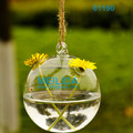 8cm/10cm/12cm clear glass ball vase wholesale