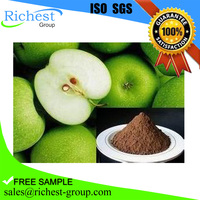 2016 best sell high purity 98% natural green apple extract,apple peel extract