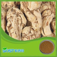 100% Natural herb extract angelica sinensis extract / dong quai extract with 1% ligustilide