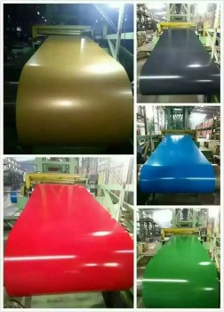 Prepainted galvanized steel coil/Galvanized steel coil for roofing sheet