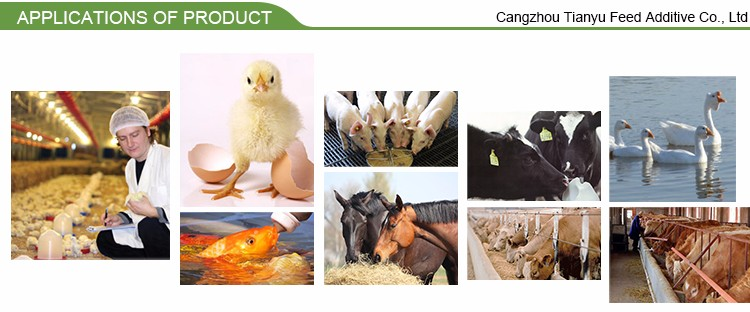 China Suppliers Bacillus Subtilis For Animal Used