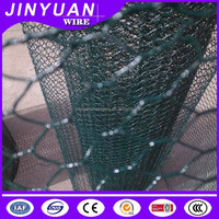 PVC Coated Hexagonal Wire Mesh Netting Professional Manufacturer
