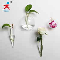 different types clear glass wall water plant vases