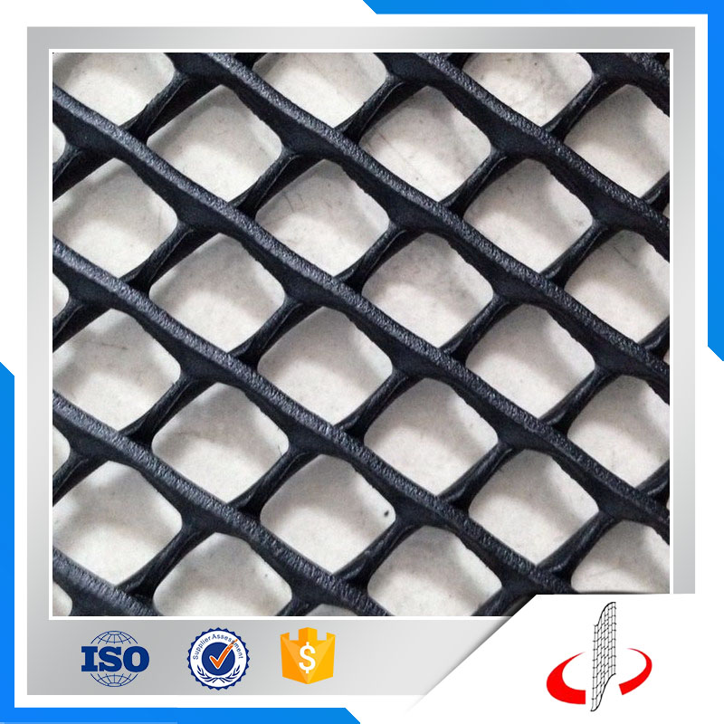 Heavy Duty Thick Plastic Extruded Grass Protection Mesh