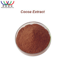 Low price Pure Natural cocoa seed extract cocoa seed p.e.