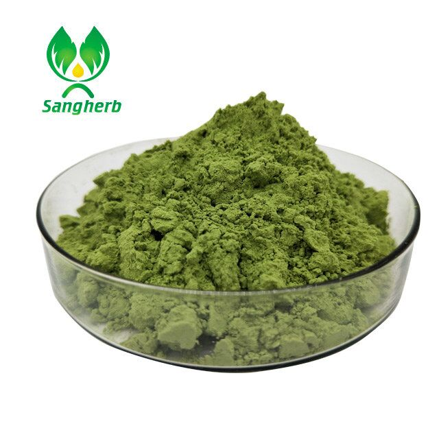 Green tea extract powder with hot sale
