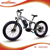 48V center motor electric bicycles taiwan/electric bike/ebike