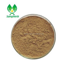 Wholesale high purity Ivy Leaf Extract Ivy Stem powder 5%-98% Hederacoside C