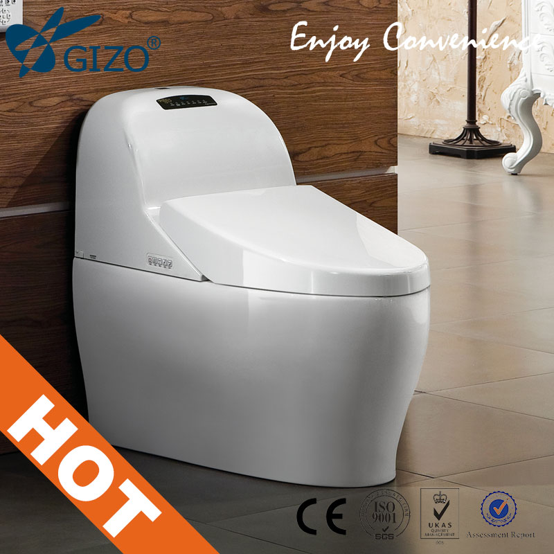 Australian Standard New Design/Smart Top Designer Toilet