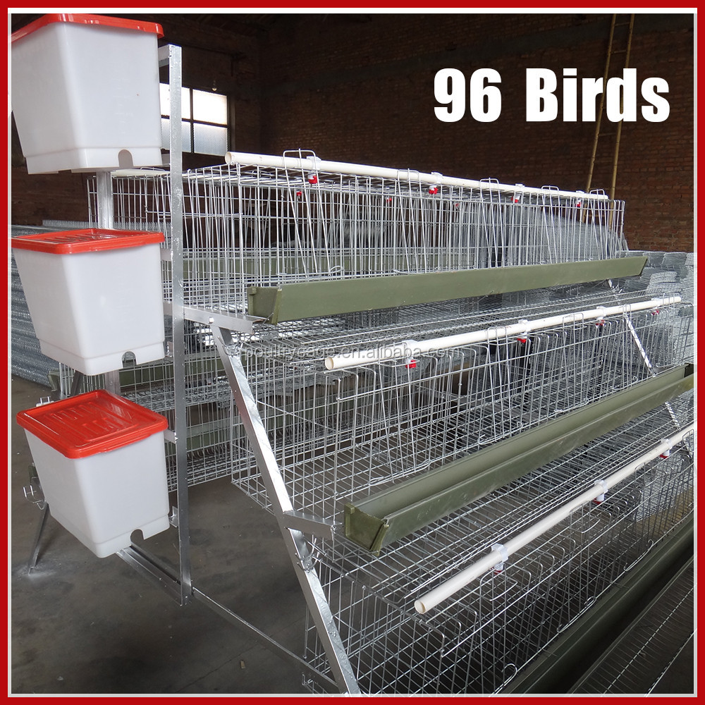 Broiler Eggs For Hatching Chicken Layer Cage / Wire Mesh Layer Cage For Egg Chicken