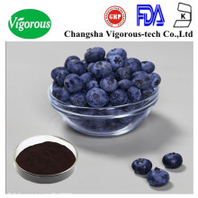 blueberries extract/ Vaccinium Macrocarpon P.E. / antioxidants / blue berry