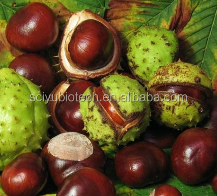 98% Horse Chestnut extract, horse chestnut dry extract powder