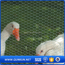 hexagonal chicken wire mesh for small bird decoration cages from china