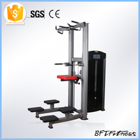 Dip/Chin Assist Station Machine/Gym Dip Chin Machine BFT-3014