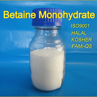 Betaine Monohydrate 590 47 6