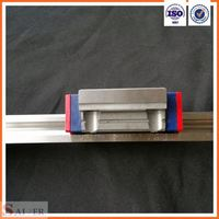 China Factory Direct Sale Linear Runner Block Bearing