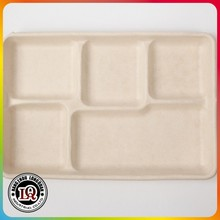 High Quality Different Size Biodegradable Bagasse Lunch Tray