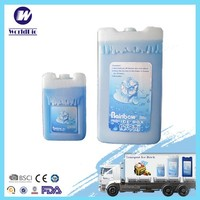 Polystyrene reusable ice box