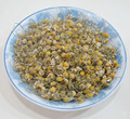 Chinese herbal tea the best Dried Chamomile flower health blossoming tea