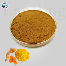 GMP standard high quality free sample turmeric powder turmeric root extract pure curcumin
