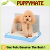 Hot Sale Plastic Dog Toilet wiht wall training Pet Loo Pet Toilet