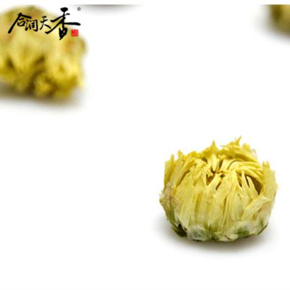 Yellow chrysanthemum small bud tea keep fit