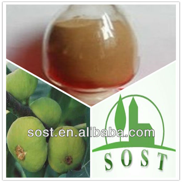 antibacterial and anti-inflammatory ficus carica fruit extract/Fig Extract
