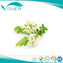 GMP: Sophora Japonica Extract/Sophora Japonica Extract powder Rutin NF11 powder in US stock with Fast Delivery