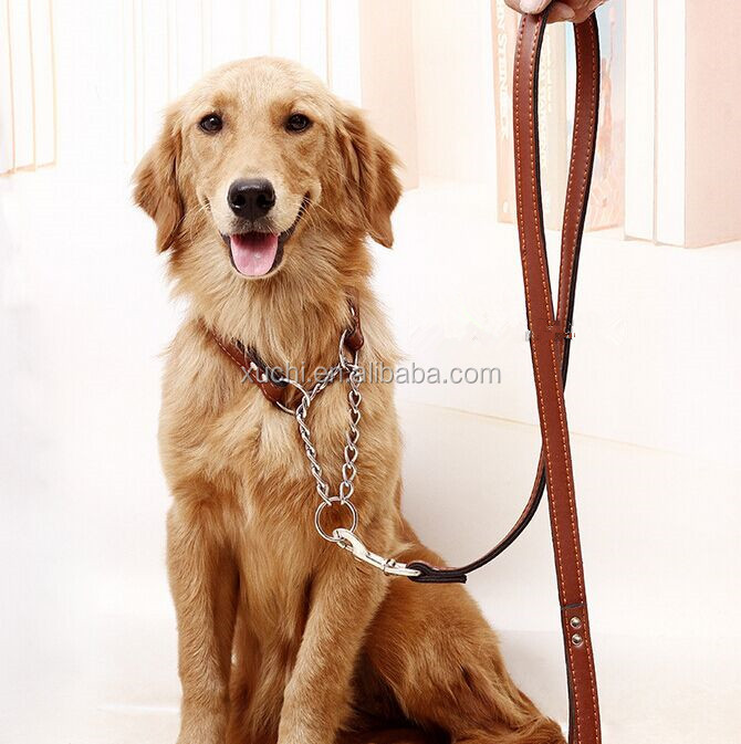 Genuine Leather Dog Leash And Collar For Large Dog