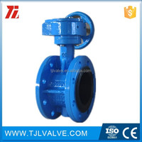 Centric type butterfly valve (Well sell)