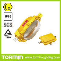 explosive proof light bulbs Tormin IP65 Flood lamp