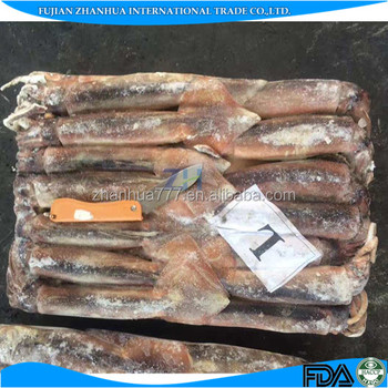Best quality board frozen illex squid for sale whole round L size