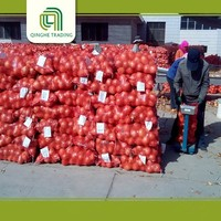 farm lowest price fresh red onion and yellow onion red onion 25kg from china
