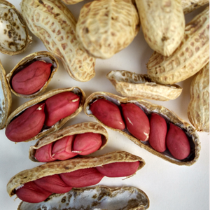 Raw Peanut Seeds for Planting