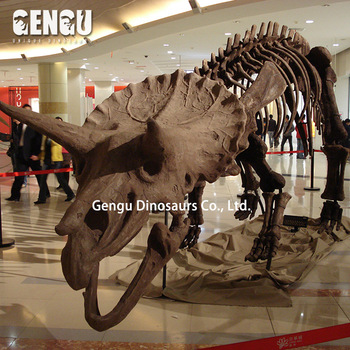 Amusement Park Artificial Dinosaur Skeleton For Education Exhibition