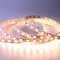 CE Rohs DC 12v 10mm wide SMD high lumen 5050 smd led strip
