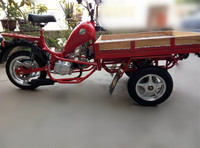 China Three Wheel Motorcycle/ 3 Wheel Cargo Tricycle