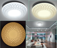 Ce rohs Intelligent LED Ceiling Light with remote control